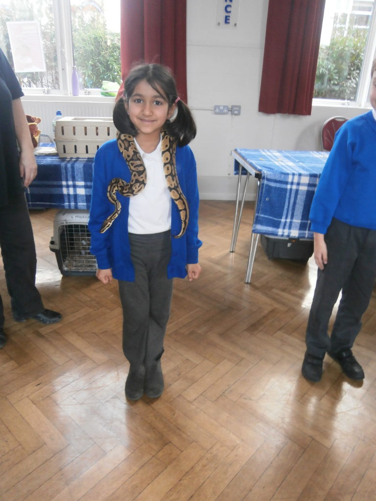 Year 2 got to hold snakes...